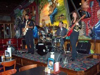 Killer Wails Live - Rock St Louis - Classic Rock Band in Fairview Heights, Illinois