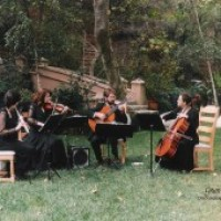 La Folia Chamber Ensemble - Chamber Orchestra / String Trio in Valley Village, California