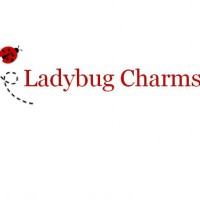 Ladybug Charms - Pony Party in Nashville, Tennessee