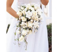 Langone's Florist and Greenhouse - Wedding Florist in ,