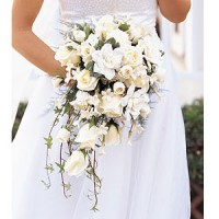 Langone's Florist and Greenhouse - Event Florist / Wedding Florist in Springfield, Massachusetts