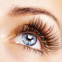 Lash OUt - Hair Stylist in ,