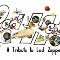 Led-Hed - Led Zeppelin Tribute Band / Classic Rock Band in Melbourne, Florida