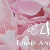 Libbie Ann Weddings - Wedding Planner in Clarksville, Tennessee