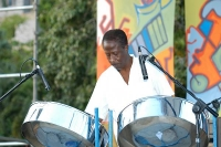 Steelin' Jazz - Steel Drum Player in Kenosha, Wisconsin