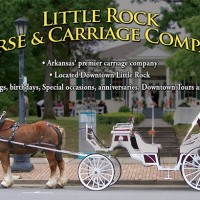 Little Rock Carriage Company - Horse Drawn Carriage in Fayetteville, Arkansas