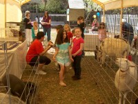 Loose Rock Riding Center - Petting Zoos for Parties in Augusta, Georgia