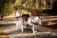 Lowcountry Carriage