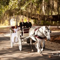Lowcountry Carriage - Horse Drawn Carriage in Charleston, South Carolina