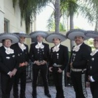 Mariachi De Mi Tierra Internacional - Mariachi Band / Latin Band in West Palm Beach, Florida