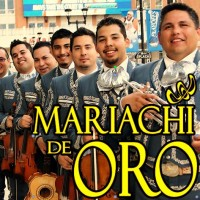 Mariachi de Oro - Mariachi Band in Irving, Texas