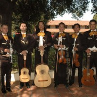 Mariachi Oro de California - Mariachi Band in Napa, California
