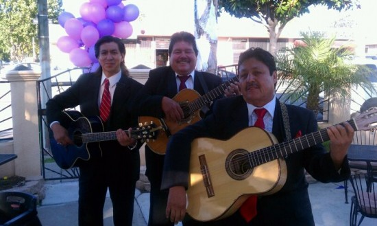 Mariachi Trio estrellas De Oro