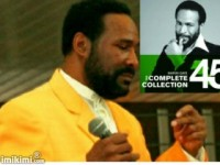 Marvin Gaye Tribute - Look-Alike in Akron, Ohio