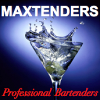 Maxtenders Bartenders - Casino Party in Wooster, Ohio