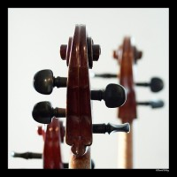 Mayfield Strings - Classical Music in Ashtabula, Ohio