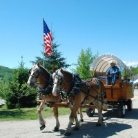 Meadow Creek Farm of Maine - Horse Drawn Carriage in Sumner, Maine