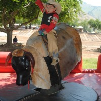 Mechanical Bull Rental N Jumpers - Carnival Rides Company in ,