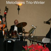 Melodaires Band - Swing Band in Sun City, Arizona