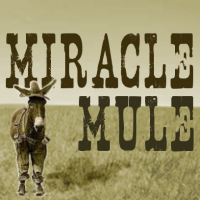 Miracle Mule - Blues Band in Fremont, California