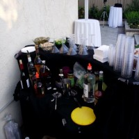 Miss Barstar Private Bartender - Event Services in Fresno, California