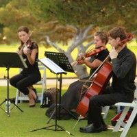 Deviant String Quartet - String Quartet / Bassist in Long Beach, California