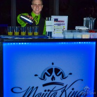 Mojito Kings - Bartender in Miami Beach, Florida