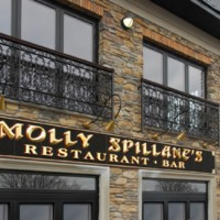 Molly Spillane's - Venue in ,