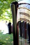 Harp Bride and Groom