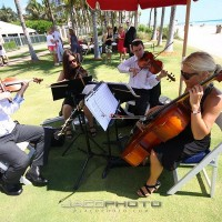 Monty Bloom Ensembles - String Trio in Orange County, California