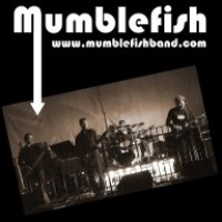 Mumblefish - Blues Band in Worcester, Massachusetts