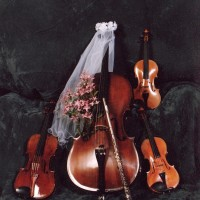 Musica-musicians for all occasions - Violinist in Henderson, North Carolina