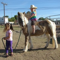 My Party Ponies - Pony Party in Phoenix, Arizona