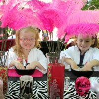 My Pretty Princess Mobile Parties - Event Planner in Nottingham, Maryland