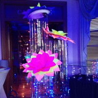 Naples Arts & Entertainment LLC - Party Decor in Charleston, Illinois