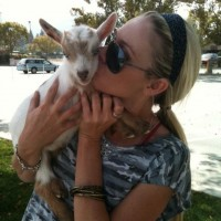 Netties Party Pals - Petting Zoos for Parties in Los Angeles, California
