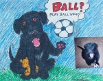 Pet Caricature - Play Ball?