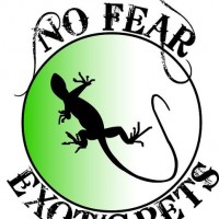 No Fear Exotic Pets - Reptile Show in Halifax, Nova Scotia