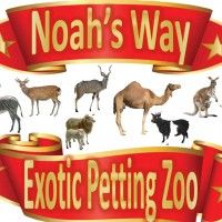 Noah's Way Exotic Petting Zoo and Pony Rides - Unique & Specialty in Abilene, Texas