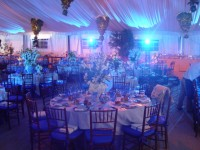 NYFF Events - Lighting Company in ,