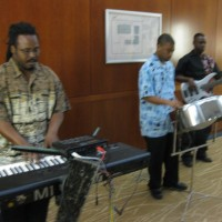 Oasis Island Sounds - Steel Drum Player in Coralville, Iowa