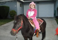 Once Upon a Pony Rides & Petting Zoo - Children's Party Entertainment in Modesto, California