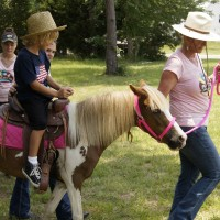 Palmetto Ponies & Pets - Pony Party in Summerville, South Carolina