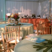 Party Perfect Party Rentals - Tent Rental Company in Hopewell, Virginia