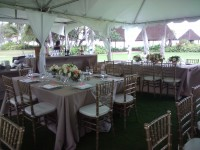 Perfect Weddings & Events by Latosha - Horse Drawn Carriage in Maui, Hawaii