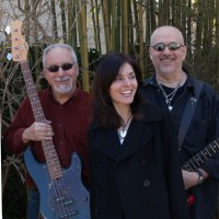 The Oakwood Trio - Cover Band in Bayport, New York