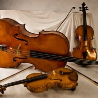 Piemonte Strings - String Trio in Manassas, Virginia