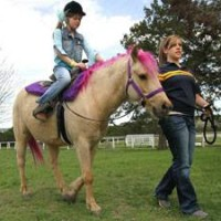 Pink Pony Party - Pony Party in Harker Heights, Texas