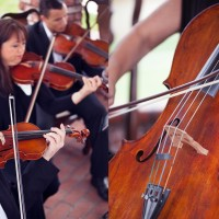 Plays Well With Others - Classical Ensemble / String Trio in Hemet, California