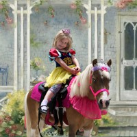Ponies 4 Parties - Pony Party in Rancho Cucamonga, California